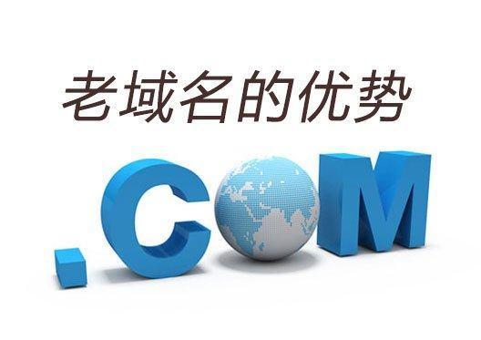 天企网络:老域名做网站优化有优势吗?